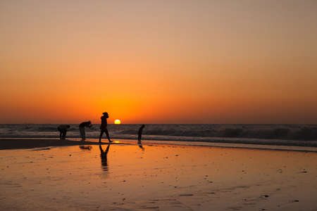 The silhouettes people at the sunset background Stock Photo - 12844763