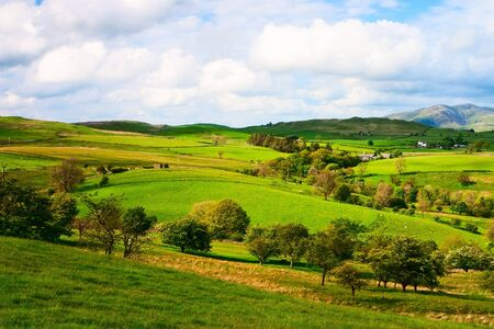 In Yorkshire Dales National Park in Great Britain Stock Photo - 12988703