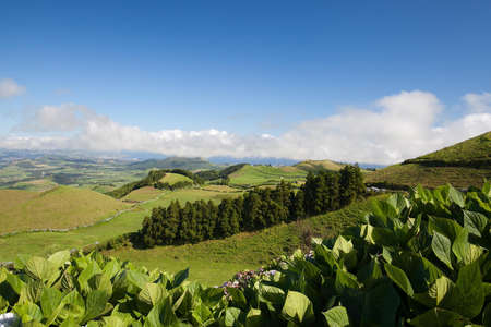 Aerial view to the city and valley, San Miguel island, Azores photo