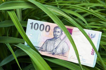rupiah: The banknote - Rupiah bill of Indonesia