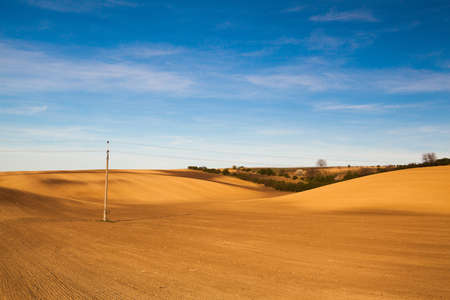 Landscape in the wine region of Moravia