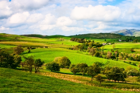 english countryside: The summer lansdcape in Yorkshire Dales in Great Britain Stock Photo
