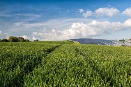 Silicon pannelli solari sul campo di grano verde Archivio Fotografico - 20370846