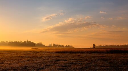 hunters tower: On the field in the morning mist Stock Photo