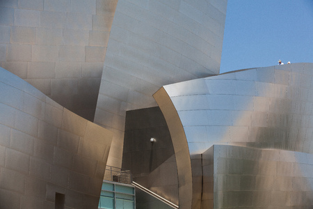 disney: Walt Disney Concert Hall in Los Angeles  This building was designed by Frank Gehry and is a major component in the Los Angeles Music Center complex