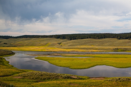 Hayden Valley - place where American Bison live photo