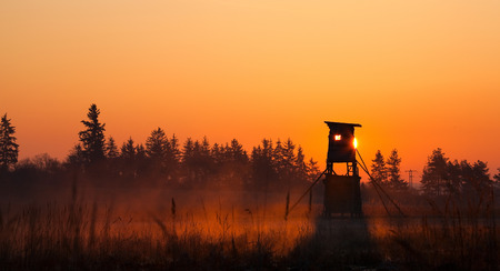 Hunter lookout tower on the edge of the forest in the morning mist