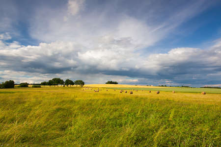 harvest time: Harvest time and summer landscape after a storm