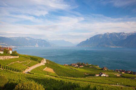 vevey: Vineyards of the Lavaux region over lake Leman (lake of Geneva),Switzerland