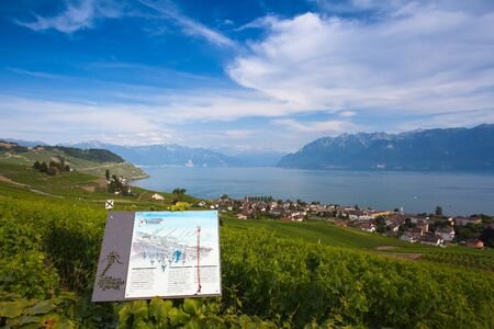 leman: Lavaux, Switzerland - July 12,2015: Vineyards of the Lavaux region over lake Leman (lake of Geneva),Switzerland