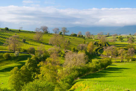 gill: Smardale Gill in Yorkshire DalesNational Park, Great Britain Stock Photo