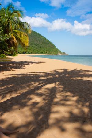 guadeloupe: Beach of Grande Anse, Deshaies, Guadeloupe island