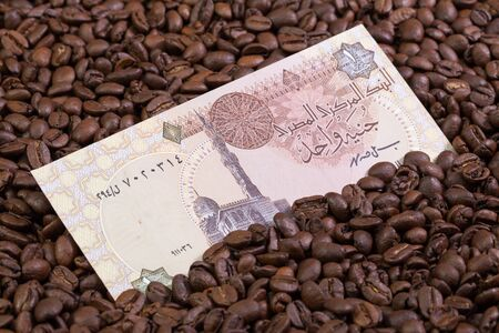 Coffee beans and Egyptian pound banknote Stock Photo