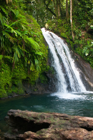 aux: Cascades aux Ecrevisses,beautiful waterfall in a rainforest. Guadeloupe, Caribbean Islands, France