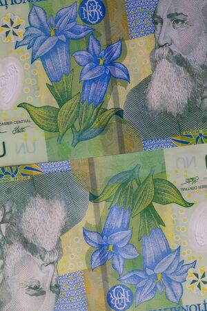 profiting: Detail of Romania Lei  banknotes
