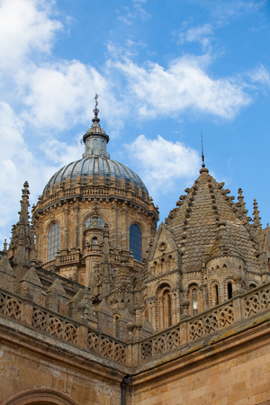 recollection: New Cathedral of Salamanca, Spain.Building began in 1513 and the cathedral was consecrated in 1733.