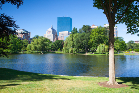 boston common: BOSTON,MASSACHUSETTS,USA - JULY 2,2016: The Public Garden founded 1837.Also known as Boston Public Garden, is a large park located in the heart of Boston, Massachusetts, adjacent to Boston Common.