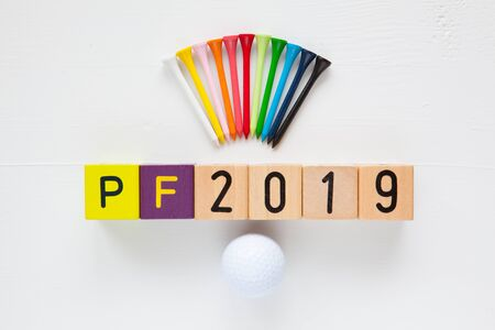 pour feliciter: P.F.2019 - an inscription from childrens wooden blocks and golf ball and wooden tees - Flat Lay Photography
