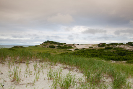 Sunset in the sand dunes beach on the Cape Cod National Seashore on the Atlantic Ocean