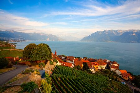 Vineyards of the Lavaux region over lake Leman (lake of Geneva),Switzerland, HDR Image.