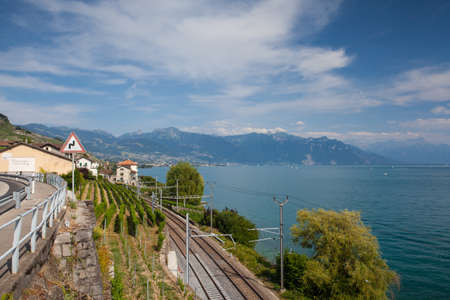 montreux: Lavaux, Switzerland - July 12, 2015: Vineyards near the railway station of the Lavaux region over lake Leman (lake of Geneva),Switzerland Editorial