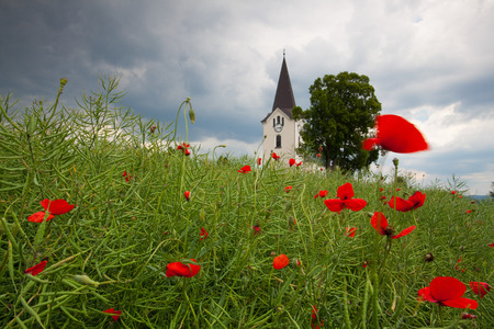 Lonely church in the poppy field before storm