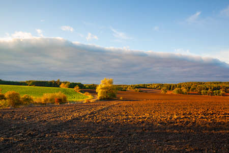 On the empty field after harvesting in summer evening. Czech Republic. Amazing sunset in Czech Bohemian Uplands