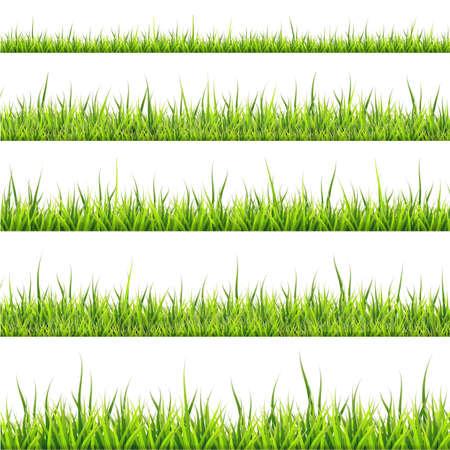 Grass border collection.