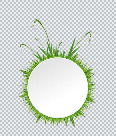 Spring banner with snowdrop and grass border around vector illustration.