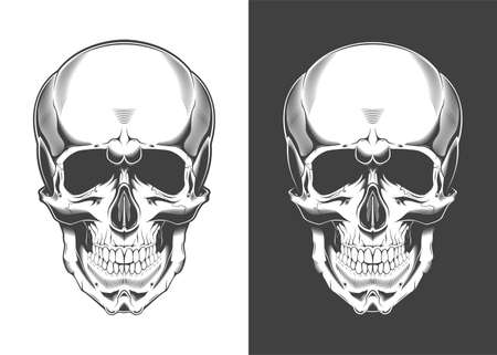 Vintage monochrome highly detailed skull illustration. Isolated vector template