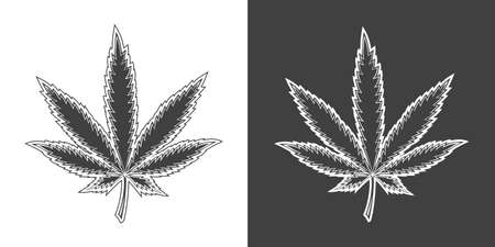 Vintage monochrome cannabis leaf illustration. Isolated vector template Фото со стока - 152964219
