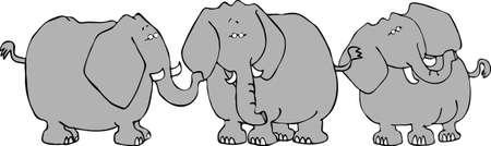 Three elephants Stock fotó - 401506