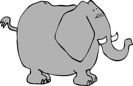 Elephant Stock fotó