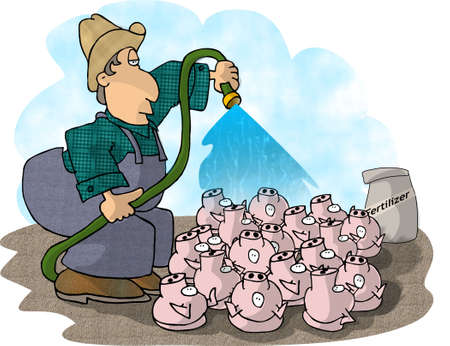 Pig farmer photo