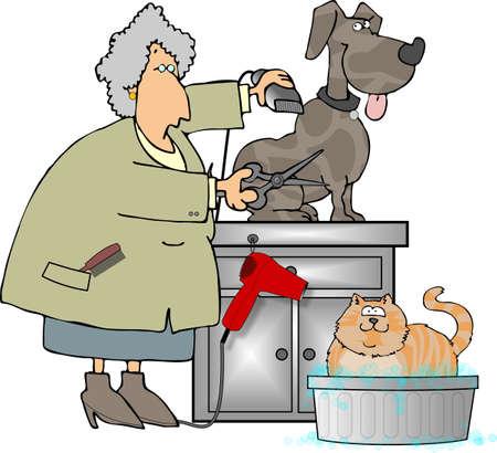 groomer: Pet Groomer Stock Photo
