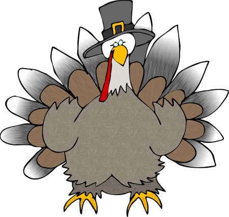 Turkey wearing a Pilgrim hat