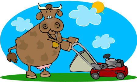 lawnmower: Cow and a lawnmower Illustration