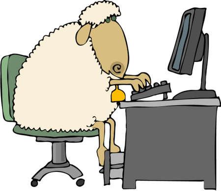 Sheep at a computer