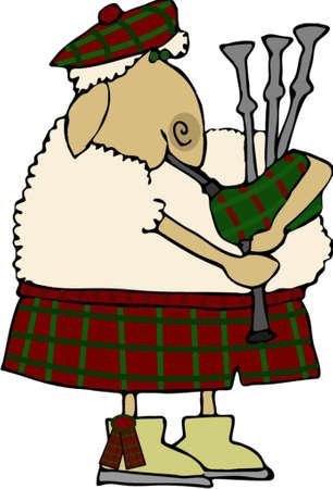 スコッチ羊