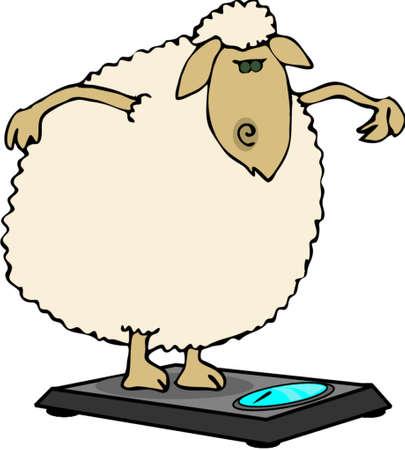 Dieting sheep