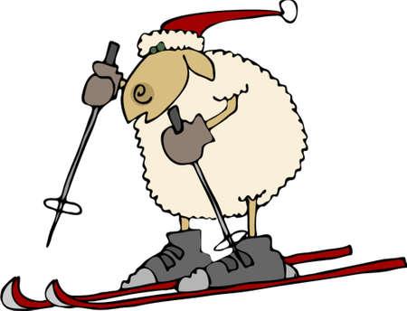 Downhill schapen