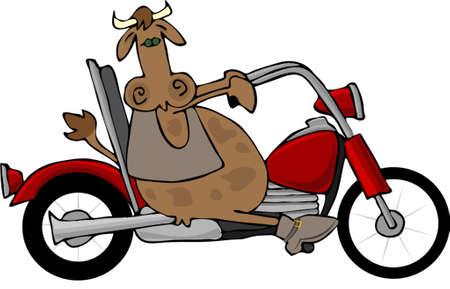 バイクに乗って牛