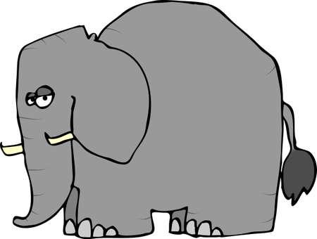 Wrinkled Elephant Stock fotó - 1157057