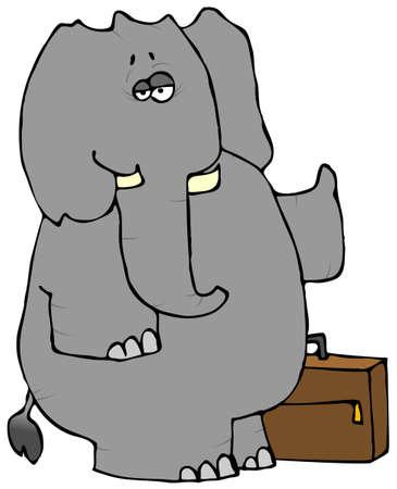 Elephant Hitchhiker