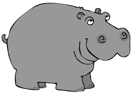Gray Hippo  Banque d'images - 1397782