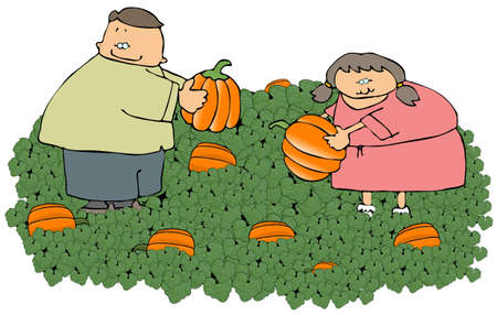 pumpkin patch: Pumpkin Patch