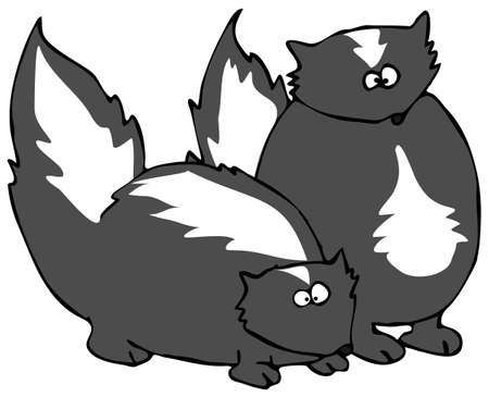 depicts: Two Skunks