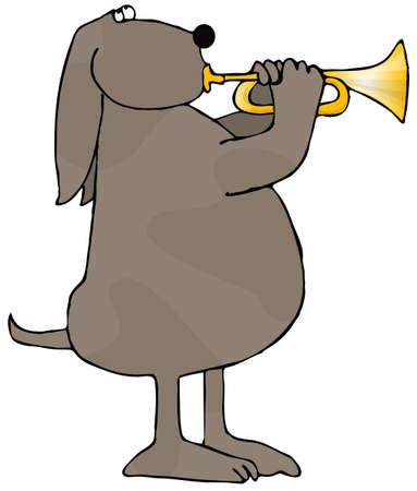 cornet: Dog Playing A Trumpet