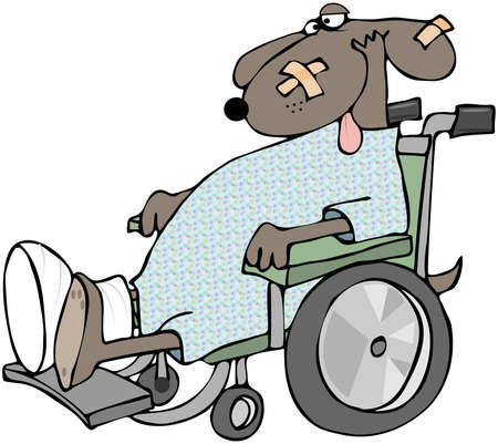 damaged: Sick Dog In A Wheelchair