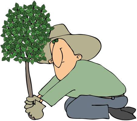 Man het planten van een boom